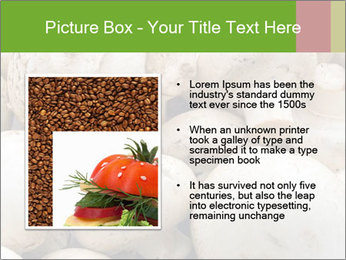 0000077329 PowerPoint Template - Slide 13