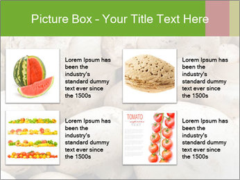 0000077329 PowerPoint Template - Slide 14