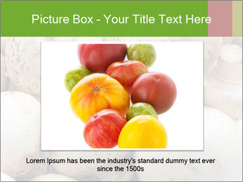0000077329 PowerPoint Template - Slide 16