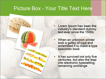 0000077329 PowerPoint Template - Slide 17