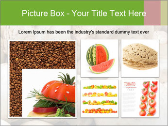 0000077329 PowerPoint Template - Slide 19