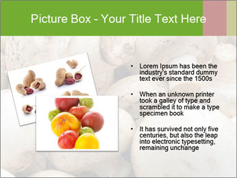0000077329 PowerPoint Template - Slide 20