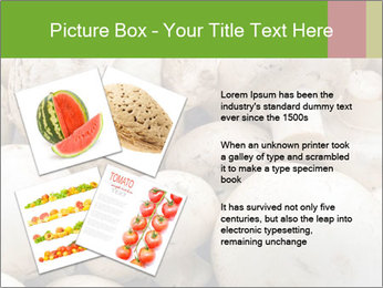 0000077329 PowerPoint Template - Slide 23