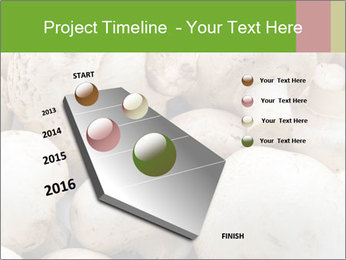 0000077329 PowerPoint Template - Slide 26