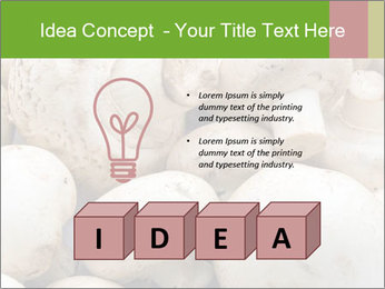 0000077329 PowerPoint Template - Slide 80