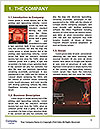 0000077330 Word Template - Page 3