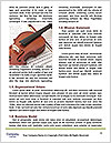 0000077330 Word Template - Page 4