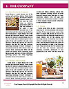 0000077334 Word Template - Page 3