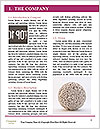 0000077342 Word Template - Page 3