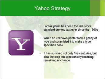 0000077347 PowerPoint Templates - Slide 11