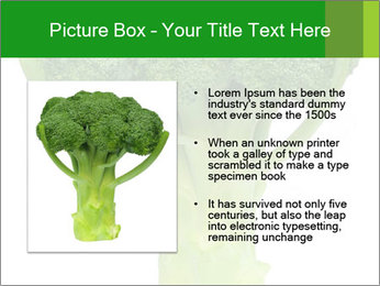 0000077347 PowerPoint Template - Slide 13