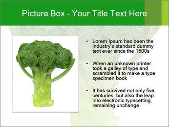 0000077347 PowerPoint Templates - Slide 13