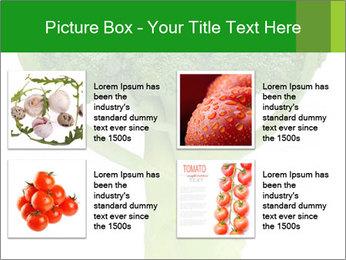 0000077347 PowerPoint Templates - Slide 14