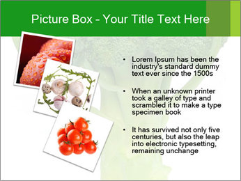 0000077347 PowerPoint Template - Slide 17