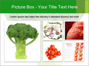 0000077347 PowerPoint Template - Slide 19