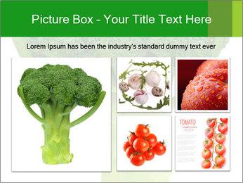 0000077347 PowerPoint Templates - Slide 19