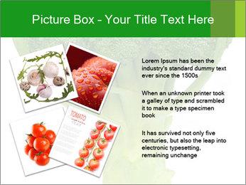 0000077347 PowerPoint Templates - Slide 23