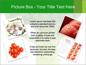 0000077347 PowerPoint Templates - Slide 24