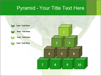0000077347 PowerPoint Template - Slide 31