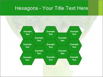 0000077347 PowerPoint Templates - Slide 44