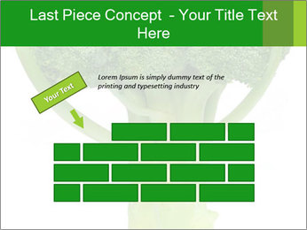 0000077347 PowerPoint Template - Slide 46