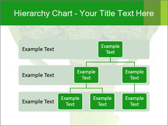 0000077347 PowerPoint Templates - Slide 67