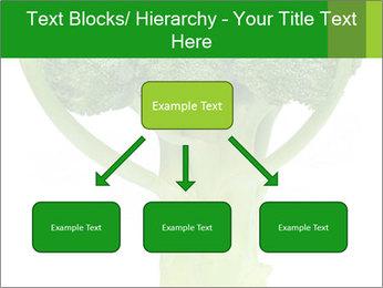 0000077347 PowerPoint Templates - Slide 69