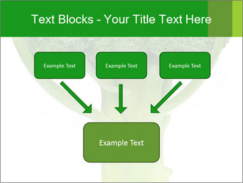 0000077347 PowerPoint Templates - Slide 70