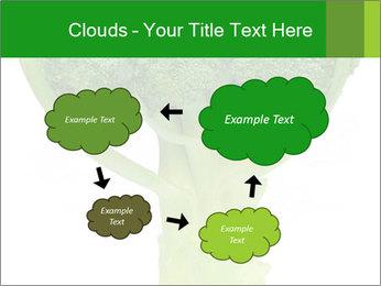 0000077347 PowerPoint Templates - Slide 72