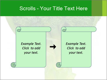 0000077347 PowerPoint Templates - Slide 74