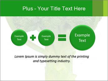0000077347 PowerPoint Templates - Slide 75