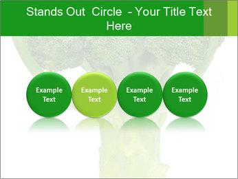 0000077347 PowerPoint Templates - Slide 76