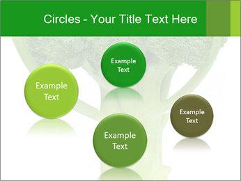 0000077347 PowerPoint Templates - Slide 77
