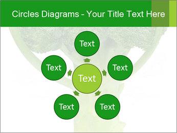 0000077347 PowerPoint Templates - Slide 78