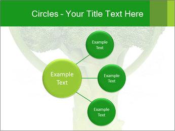 0000077347 PowerPoint Templates - Slide 79