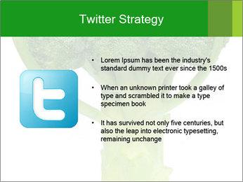 0000077347 PowerPoint Templates - Slide 9
