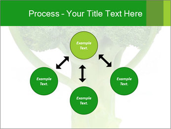 0000077347 PowerPoint Template - Slide 91