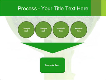 0000077347 PowerPoint Template - Slide 93