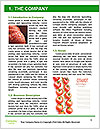 0000077347 Word Templates - Page 3