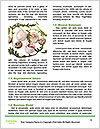 0000077347 Word Templates - Page 4