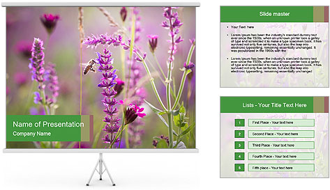 0000077351 PowerPoint Template
