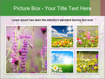 0000077351 PowerPoint Templates - Slide 19