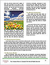 0000077351 Word Templates - Page 4