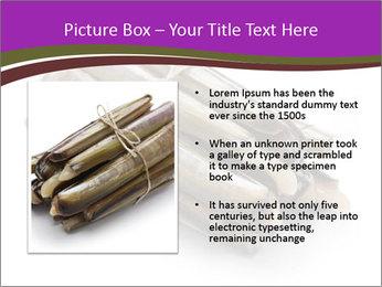 0000077359 PowerPoint Templates - Slide 13