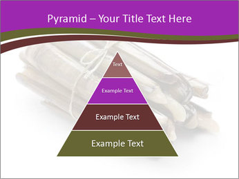0000077359 PowerPoint Templates - Slide 30
