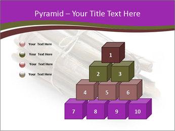 0000077359 PowerPoint Templates - Slide 31