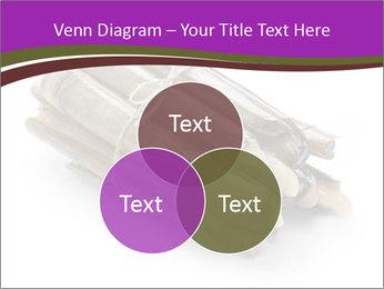 0000077359 PowerPoint Templates - Slide 33