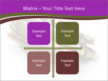 0000077359 PowerPoint Templates - Slide 37
