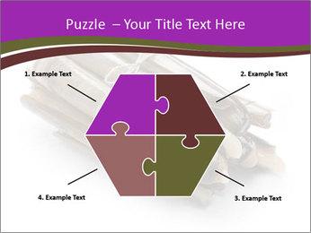 0000077359 PowerPoint Templates - Slide 40