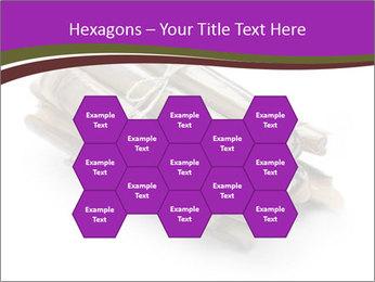 0000077359 PowerPoint Templates - Slide 44